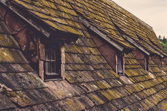 Best Roofing Shoes for Shingles